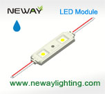5050 SMD Waterproof LED Module, Rectangular 2 Lights Led Module, 2 Led Outdoor Led Display Module